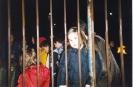 Festa di San Martino - 2003